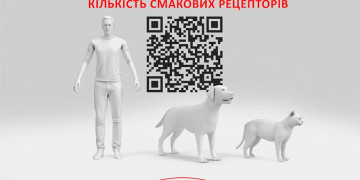 AR приложение Royal Canin